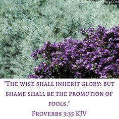 Proverbs 3:35 KJV