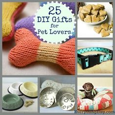 25 DIY Projects for Pet Lovers! #diy #dogdiy #petdiy #dogs #cats #doityourself #crafts #projects