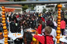 See the pictures of the first orange festival in Mili on the 18 of March 2012. This festival was organized by locals and foreigners who live on samos.