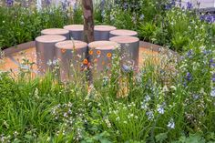 Thinking of Peace at the RHS Chelsea Flower Show 2015 / RHS Gardening