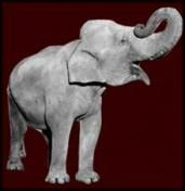 """Lesson plan to accompany George Orwell's 1931 autobiographical essay """"Shooting an Elephant,"""" which Orwell based on his experience as a police officer in colonial Burma.    This lesson plan is designed to help students read Orwell's essay both as a work of literature and as a window into the historical context about which it was written. This lesson plan may be used in both the History and Social Studies classroom and the Literature and Language Arts classroom."""