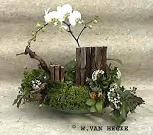 voorjaarsstukje met orchidee - Google Search