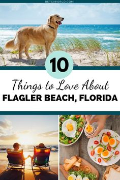 You will be planning your next vacation to Flagler Beach Florida when you see these 10 things to love about the laid back beaches there! Don't miss these 10 reasons to love Flagler Beach Florida Vacation, Florida Travel, Florida Beaches, Travel Usa, Florida City, Mexico Travel, Spain Travel, Beach Trip, Beach Vacations
