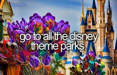Go to all the Disney Theme Parks  So far...Florida 10 times, Paris twice and L.A. twice.