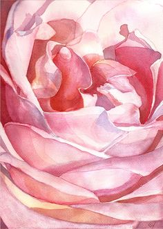 Rose from Balboa Park Watercolor - 10x14 Signed Giclee Fine Art Print. $40.00, via Etsy.
