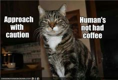 Approach with caution Human's not had coffee