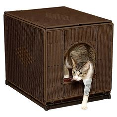 Hide unsightly cat litter pans and keep messy grit contained while enhancing the look of your home's interior with the Decorative Liter Pan Cover. Handsome wicker resin with metal frame design keeps litter pans out of sight while allowing easy pet access.