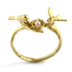 weird obsession with bird nest rings.