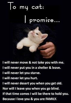 Sometimes bad times may mean revising our promises. But we will all Base our decisions on these tenets, and make the best possible arrangements, for you. That the decisions in the past, not repeat in our present or future. Know how very much we love our Fur Babies.
