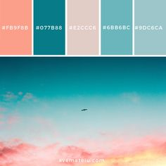 Color Palettes – Ave Mateiu Informations About Beautiful Sky Color Palette Pin You can easily us Hex Color Palette, Beach Color Palettes, House Color Palettes, Color Schemes Colour Palettes, Color Palate, Bright Colour Palette, Modern Color Palette, Bright Colors, Couleur Hexadecimal