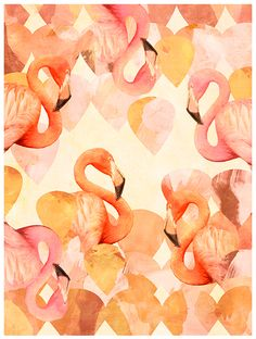 Flamingo Mingle ( Photographed flamingos digitally combined on a scalloped pattern with corals, deep yellows and pinks)
