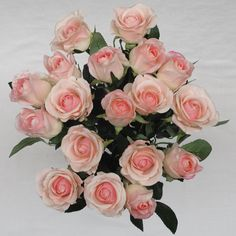 Image result for real white open roses