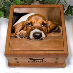 Dog Urn with Photo Tile. Small size wood urn personalized with dog image, dog's name, optional date and dog's photo. Memorial Urns, Cat Memorial, Memorial Ideas, Dog Cremation, Cremation Ashes, Pet Dogs, Dog Cat, Doggies, Dog Urns
