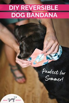 Learn how to make the cutest DIY reversible dog bandanas that suit your style. This simple DIY is perfect for stylish dog moms! Dog Washing Station, Diy Dog Treats, Thing 1, Dog Crafts, Dog Birthday, Cute Diys, Find Pets, Dog Bandana, Bandanas