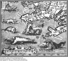 Año: 1570  Científico/artista: Abraham Ortelius  Publicado originalmente en: Theatrum Orbis Terrarum  Ahora aparece en: Monstruos del mar por Richard Ellis  En este fragmento de un mapa de Islandia se muestran monstruos marinos que se creía habitaban las aguas circundantes.