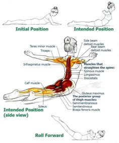 Sciatica Treatment: Exercises to Improve Your Posture and Bring Relief...