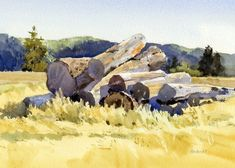 Mike Kowalski, near Hood River, OR Watercolor Painting Techniques, Watercolor Landscape Paintings, Watercolor Sketch, Watercolour Painting, Landscape Art, Painting & Drawing, Watercolours, Watercolor Pictures, Watercolor Trees