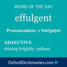 effulgent (adjective): Shining brightly; radiant. Word of the Day for November 5th, 2014 #WOTD #WordoftheDay #effulgent