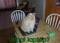 What Laptop Should I Buy for College? (2012 Edition)
