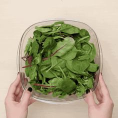 Left-over salad greens? Try this to make them last longer!   These Five Grocery Hacks Will Make Your Groceries Last Longer