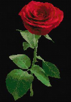 Cross Stitch | Red Rose xstitch Chart | Design