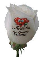 Rosa tatuada en el petalo con una felicitacion para el dia de la madre, en nuestra web http://graficflower.com puedes encontrar flores y rosas originales y exclusivas.