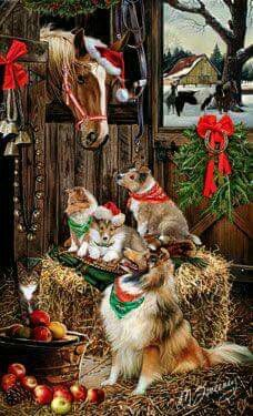 Cardigan Welsh Corgi - Christmas Friends Christmas cards - by Margaret Sweeney Christmas Friends, Cowboy Christmas, Christmas Animals, Vintage Christmas, Christmas Cards, Holiday Cards, Christmas Holiday, Christmas Boxers, Aussie Christmas