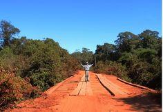 Desmatamento na Amazônia e Cerrado