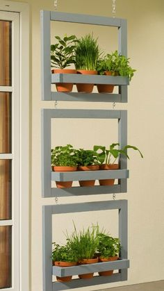 Your DIY vertical herb garden will need some attention in the beginning, by setting everything up and planting the herbs you will need, but after that is becomes easier to manage the herb garden, by watering the plants and cutting any excess foliage or dry ends. Some herbs work better when dried, so you may need a place where to do so, but others better used when fresh, so it is more practical as you only need to get the herb from your vertical planters and add it to the dish you are… Vertical Herb Gardens, Vertical Planter, Planter Pots, Herbs Indoors, Plant Species, Hanging Baskets, Ladder Decor, Greenery, Concept