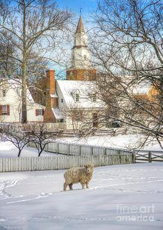 Winter in Colonial Williamsburg VA Colonial Williamsburg Va, Williamsburg Christmas, Williamsburg Virginia, Winter Szenen, Winter Time, Winter Season, Virginia Is For Lovers, Colonial America, Snow Scenes