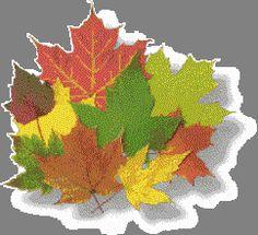 Żegnaj lato, witaj jesień!