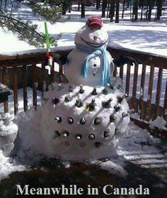 Meanwhile in Canada...beer snowman cooler