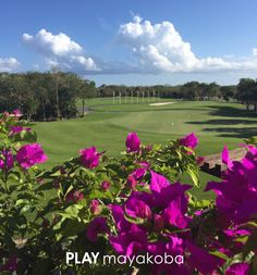 The view from KOBA Restaurant at Mayakoba Golf Course, El Camaleón is simply stunning…