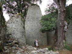 Great Zimbabwe ruins Aloe | zimtree