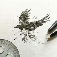 Imagem de art, bird, and drawing