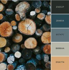 Fall Color Schemes, Color Schemes Colour Palettes, Paint Color Schemes, Colour Pallete, House Color Palettes, Bedroom Colour Palette, Modern Color Palette, Modern Colors, Modern Color Schemes