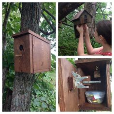"from amanderbee: There are a series of caches in our area that are ""gadget"" caches; all are birdhouses and all are pretty easy to find. The tricky part is opening them! Each birdhouse is rigged to open an unusual way. I like puzzling them out and the kids love the swag inside. ;)"