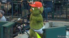 On his birthday, Orbit decided to go streaking through Minute Maid Park | MLB.com