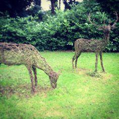 Willow deer sculpture- breath taking!