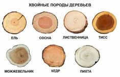VK is the largest European social network with more than 100 million active users. Wood Crafts, Diy And Crafts, Wood Carving Designs, Wood Mosaic, Wooden Hand, Garden Crafts, Old Wood, Diy Frame, Wood Design