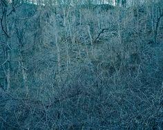 Anna Collette - Untitled (dark landscape #65)