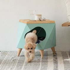 Choosing the right dog kennels must be adjusted to your needs, because dog cages are made to vary, ranging from the size, type of material, and also the Luxury Dog Kennels, Animal Gato, Pet Hotel, Dog Cages, Small Dog Clothes, Wood Dog, Hamster, Cat Room, Pet Furniture