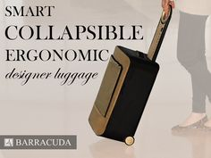 Very cool, guyyyysss!!!! Barracuda: Collapsible Luggage + Tray + GPS + USB Charger