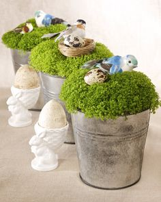 """MS - See the """"Irish Moss Centerpiece"""" in our Easter and Spring Centerpieces gallery Easter Table, Easter Party, Hoppy Easter, Easter Eggs, Moss Centerpieces, Easter Centerpiece, Centerpiece Ideas, Wedding Centerpieces, Do It Yourself Design"""