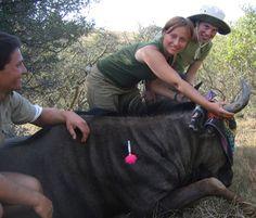 Volunteer Work at Kariega Conservation Project in South Africa | Wildlife Conservation | Big Five Reserve Program