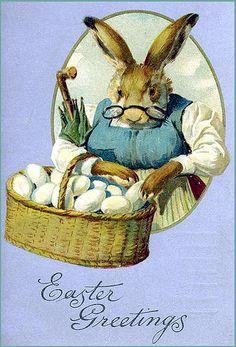 Grandma Bunny... vintage postcard #Easter