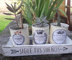 Tin Can Crafts, Fall Crafts, Diy Crafts, Flea Market Crafts, Decorated Flower Pots, Recycle Cans, Small Outdoor Spaces, Altered Tins, Backyard Garden Design