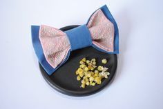 FREE SHIPPING Blue pink bowtie Men's bowtie Gift by accessories482