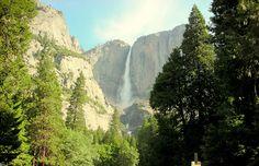 Visit Yosemite National Park