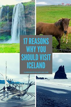 Whether you want to visit the black sand beaches view towering waterfalls or swim in the Blue Lagoon Iceland offers something for everyone. Here are 17 reasons why you should pack up your suitcase and visit Iceland as a wheelchair user! Iceland Travel Tips, Iceland Road Trip, Europe Travel Guide, Travel Guides, Travel Info, Travel Hacks, Travel Packing, Usa Travel, Solo Travel